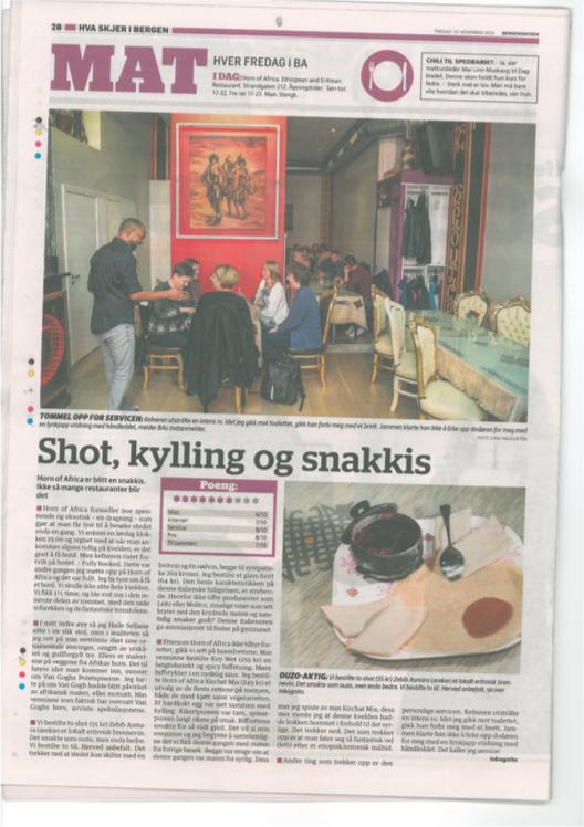 Omtale Horn of Africa, Bergensavisen 13.11.2015